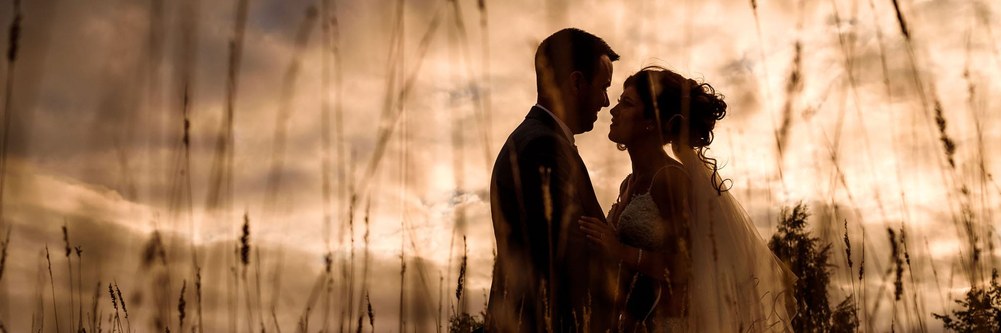 silhouette of the bride and groom in a field of long grass